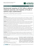 """Báo cáo y học: """" Epratuzumab targeting of CD22 affects adhesion molecule expression and migration of B-cells in systemic lupus erythematosus"""""""