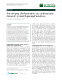 "Báo cáo y học: "" The interplay of inflammation and cardiovascular disease in systemic lupus erythematosus"""