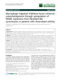"Báo cáo y học: ""Macrophage migration inhibitory factor enhances osteoclastogenesis through upregulation of RANKL expression from fibroblast-like synoviocytes in patients with rheumatoid arthriti"""
