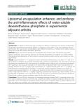 "Báo cáo y học: ""Liposomal encapsulation enhances and prolongs the anti-inflammatory effects of water-soluble dexamethasone phosphate in experimental adjuvant arthritis"""