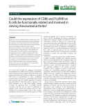 """Báo cáo y học: """"Could the expression of CD86 and FcγRIIB on B cells be functionally related and involved in driving rheumatoid arthritis"""""""