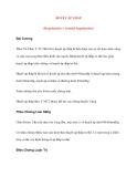 Bệnh Học Thực Hành: Huyết áp thấp (Hypotension = Arterial hypotension)