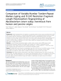 """Báo cáo thú y: """" Comparison of Variable-Number Tandem-Repeat Markers typing and IS1245 Restriction Fragment Length Polymorphism fingerprinting of Mycobacterium avium subsp. hominissuis from human and porcine origins"""""""