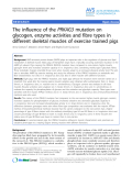"""Báo cáo khoa học: """"The influence of the PRKAG3 mutation on glycogen, enzyme activities and fibre types in different skeletal muscles of exercise trained pigs"""""""