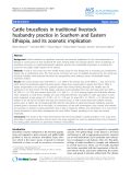 """Báo cáo khoa học: """"Cattle brucellosis in traditional livestock husbandry practice in Southern and Eastern Ethiopia, and its zoonotic implication"""""""