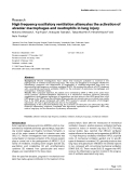 """Báo cáo y học: """"High frequency oscillatory ventilation attenuates the activation of alveolar macrophages and neutrophils in lung injury"""""""