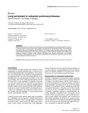 "Báo cáo y học: ""Lung surfactant in subacute pulmonary disease"""
