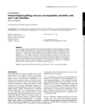 """Báo cáo y học: """"Immunologists getting nervous: neuropeptides, dendritic cells and T cell activation"""""""