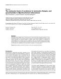 "Báo cáo y học: "" The molecular basis of resistance to isoniazid, rifampin, and pyrazinamide in Mycobacterium tuberculosis"""