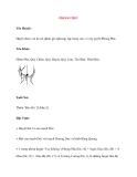 Lý thuyết Kinh mạch và Huyệt đạo: PHONG PHỦ