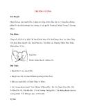 Lý thuyết Kinh mạch và Huyệt đạo: TRƯỜNG CƯỜNG