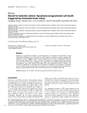 """Báo cáo y học: """" Bench-to-bedside review: Apoptosis/programmed cell death triggered by traumatic brain injury"""""""