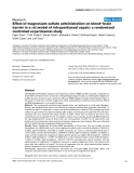 """Báo cáo y học: """"Effect of magnesium sulfate administration on blood–brain barrier in a rat model of intraperitoneal sepsis: a randomized controlled experimental study"""""""