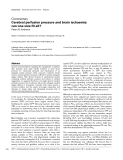 """Báo cáo khoa học: """"Cerebral perfusion pressure and brain ischaemia: can one size fit all"""""""