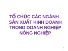 TỔ CHỨC CÁC NGÀNH SẢN XUẤT KINH DOANH TRONG DOANH NGHIỆP NÔNG NGHIỆP