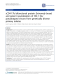 "Báo cáo y học: ""sCD4-17b bifunctional protein: Extremely broad and potent neutralization of HIV-1 Env pseudotyped viruses from genetically diverse primary isolates"""