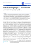 "Báo cáo y học: ""  Molecular mechanisms of HIV-1 persistence in the monocyte-macrophage lineage"""