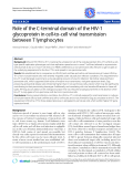 "Báo cáo y học: "" Role of the C-terminal domain of the HIV-1 glycoprotein in cell-to-cell viral transmission between T lymphocytes"""