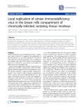 """Báo cáo y học: """"Local replication of simian immunodeficiency virus in the breast milk compartment of chronically-infected, lactating rhesus monkeys"""""""