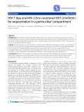 "Báo cáo y học: ""HIV-1 Vpu and HIV-2 Env counteract BST-2/tetherin by sequestration in a perinuclear compartment"""