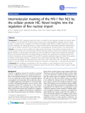 """Báo cáo y học: """" Intermolecular masking of the HIV-1 Rev NLS by the cellular protein HIC: Novel insights into the regulation of Rev nuclear impo"""""""
