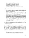 HỢP TÁC KINH TẾ CHÂU Á THÁI BÌNH DƯƠNG - LƯƠNG VĂN TỰ - 4