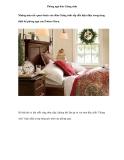 Phòng ngủ đón Giáng sinh