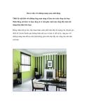 Décor nhà với những mảng màu sinh động