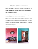 Những thiết kế nội thất tuyệt vời của Irina Graewe