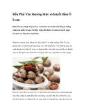 Đến Phú Yên thưởng thức sò huyết đầm Ô Loan