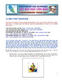 43.LỆNH FREE TRANSFORM