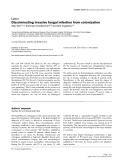 """Báo cáo y học: """"Discriminating invasive fungal infection from colonization"""""""