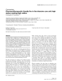 """Báo cáo y học: """"Pharmacotherapeutic friendly fire in the intensive care unit: high stakes seeking high calibre"""""""