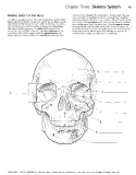 Kaplan anatomy coloring book - part 2