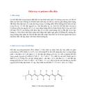 Điện tử p và polymer dẫn điện