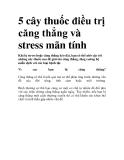 5 cây thuốc điều trị căng thẳng và stress mãn tính