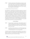 SỞ HỮU TRÍ TUỆ - NHÃN HIỆU VÀ CHỈ DẪN ĐỊA LÝ - 3