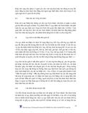 SỞ HỮU TRÍ TUỆ - NHÃN HIỆU VÀ CHỈ DẪN ĐỊA LÝ - 5