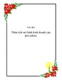 Đề  tài : Phân tích mô hình kinh doanh của : pico plaza