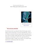 Bệnh xương khớp không trừ ai Bài 15: Phòng ngừa đau thắt lưng cấp do tư thế