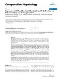 "Báo cáo y học: ""Expression of AFP and Rev-Erb A/Rev-Erb B and N-CoR in fetal rat liver, liver injury and liver regeneration"""