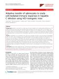 "Báo cáo y học: ""Adoptive transfer of splenocytes to study cell-mediated immune responses in hepatitis C infection using HCV transgenic mice"""