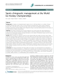 """Báo cáo y học: """"Sports chiropractic management at the World Ice Hockey Championships"""""""