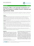 """Báo cáo y học: """"Protective effects and potential mechanisms of Pien Tze Huang on cerebral chronic ischemia and hypertensive stroke"""""""