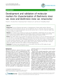 """Báo cáo y học: """"Development and validation of molecular markers for characterization of Boehmeria nivea var. nivea and Boehmeria nivea var. tenacissima"""""""