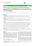 """Báo cáo y học: """"The Yin and Yang actions of North American ginseng root in modulating the immune function of macrophages"""""""