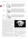 EDUCATION IN HEART VOL 3  - PART 5