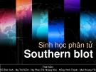 Bài thuyết trình Sinh học phân tử_Southern blot
