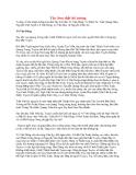 Lịch sử về Tây Sơn thất hổ tướng