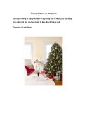 Ý tưởng trang trí cây thông Noel